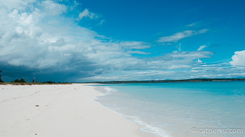 Inilah Pantai Cemara Lombok Timur! Siapa yang gak doyan? Kalau nyasar ke pantai seperti ini.