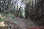 Harus melewati sedikit jalur tengah hutan kecil.