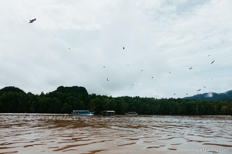Liburan ke Langkawi, kamu bisa main ke Kilim Geoforest Park!