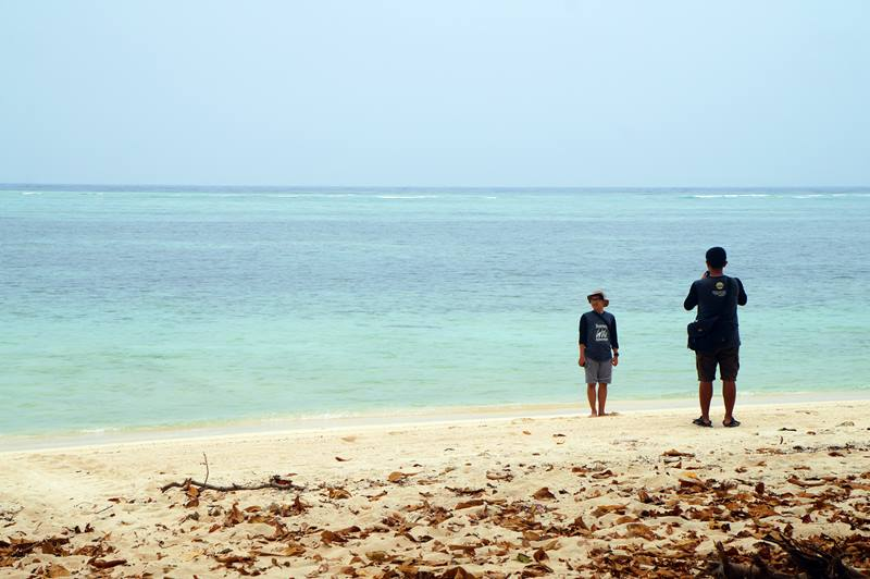 Pasir pantai di sekeliling Pulau Sangalaki Kepulauan Derawan ini memang cocok untuk bertelur para penyu