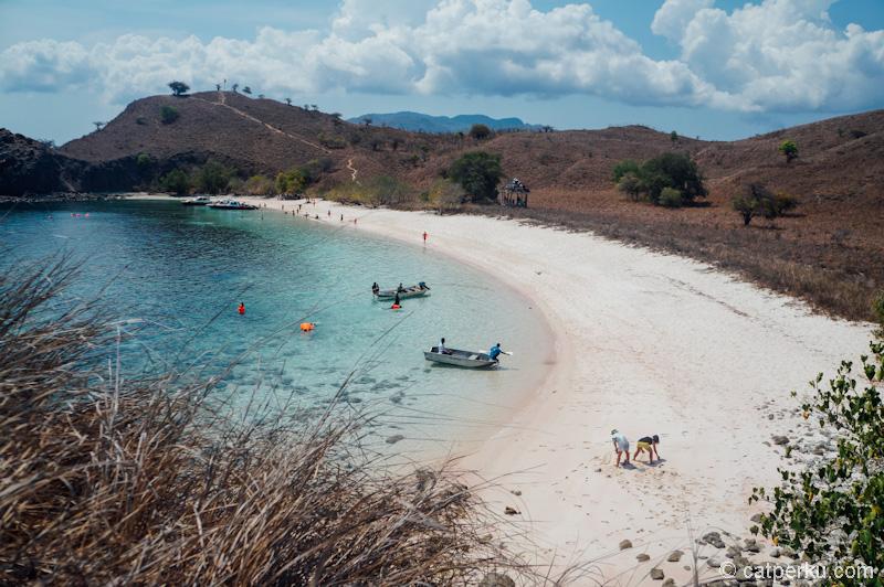 Pink Beach Flores adalah salah satu pantai terbaiknya Flores