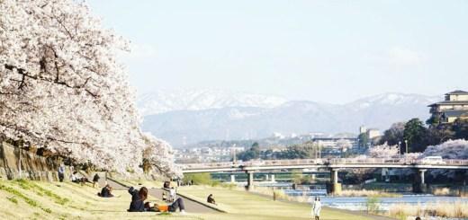 Salah satu moment yang paling saya suka ketika menyusuri Sungai Saigawa di Kanazawa