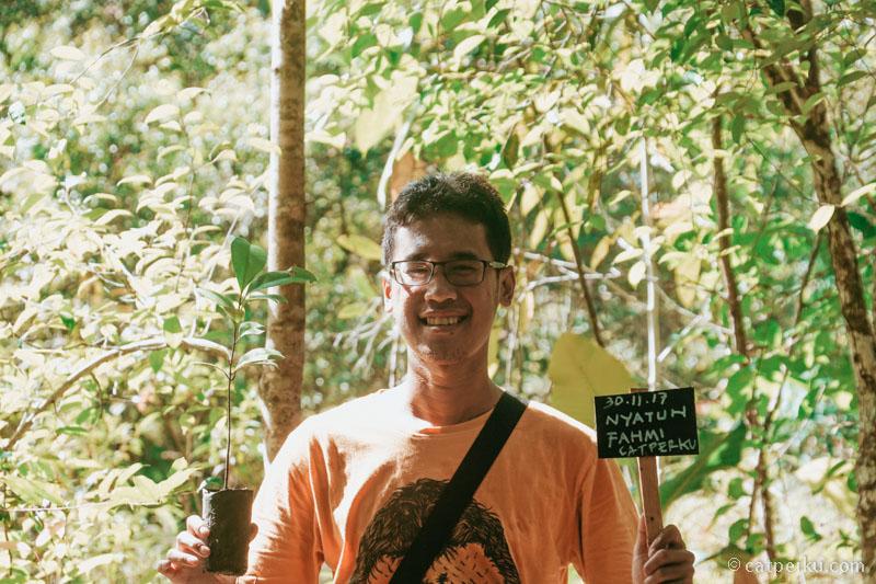 Saya milih Pohon Nyatuh karena banyak berguna bagi Orangutan