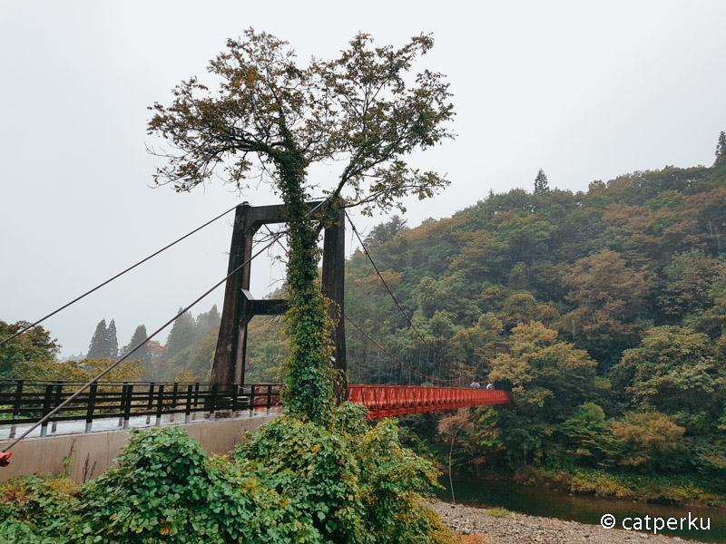 Setelah melewati jembatan ini jalur trekking di Lembah Dakigaeri dimulai.