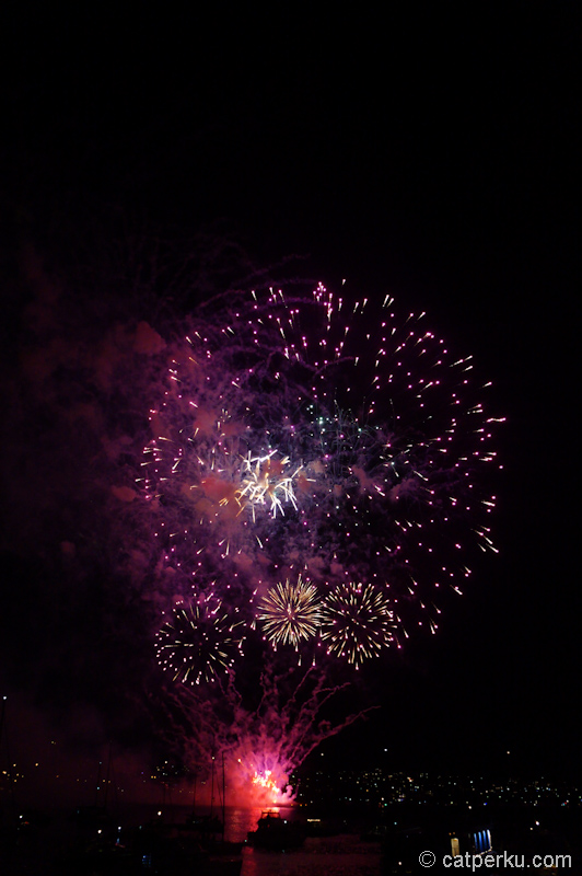 Sydney fireworks! (10)