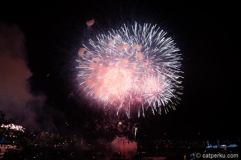 Sydney fireworks! (11)