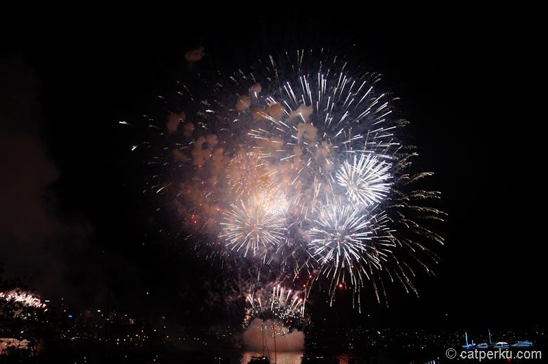 Sydney fireworks! (12)