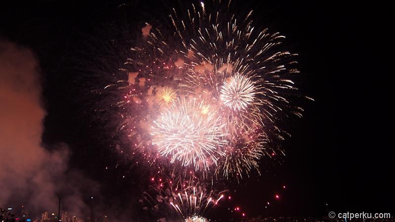 Sydney fireworks! (3)