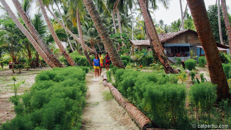 Tailana ini adalah pulau yang menyenangkan untuk liburan!