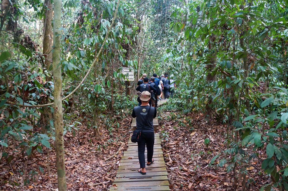 Untuk menuju lokasi Kayu Ulin raksasa harus trekking sejauh 800 meter terlebih dahulu