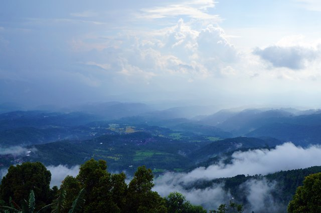Ya kalau mau melewatkan pemandangan seperti ini gak apa sih nggak mau ngopi - ngopi lucu di Ngiring Ngewedang :3