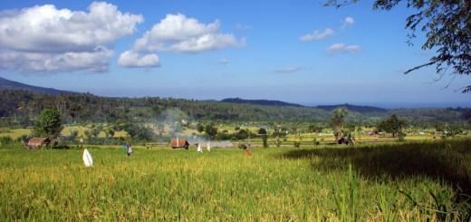 Yang Ijo - Ijo Dari Bali - Cover