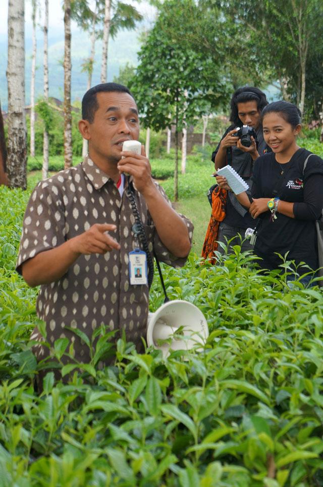 Pak Pudji, guide kami yang dengan sabar menjelaskan tentang seluk beluk Teh juga pemrosesannya hingga akhir.