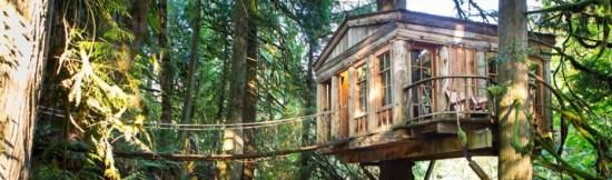 treehousepoint.com