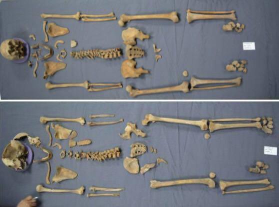 restos-sarcofago-alejandria