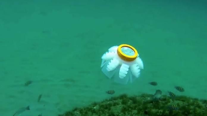 jellybot