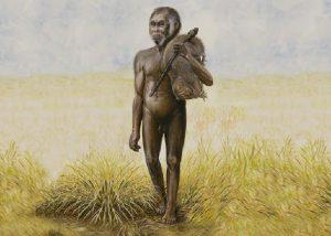 Arqueológica: Los antepasados de los hobbits descubiertos en Indonesia