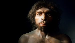 ¿Confirman que el homo sapiens modificado genéticamente por extraterrestres?