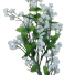 Transparent-Bgrnd baby's breath_2