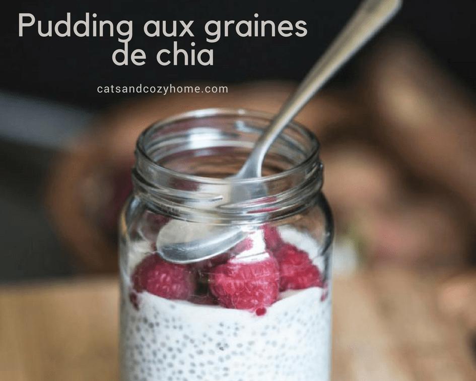 Pudding-aux-graines-de-chia
