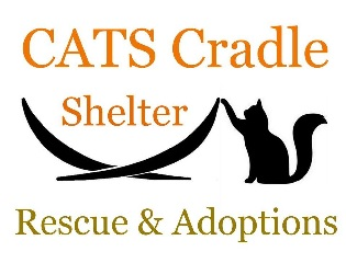 Image result for cats cradle shelter