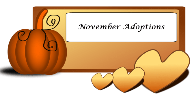 November Adoptions