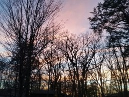 My first Georgia sunset!