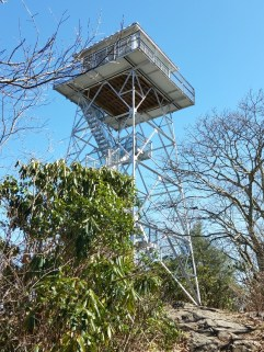 Albert Mnt. tower. I almost threw up on the way down.