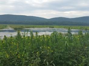 Wallkill Reserve