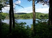 Finnerty Pond