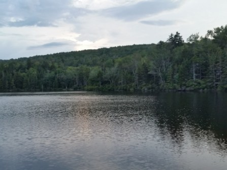 wpid-griffith-lake-02.jpg.jpeg