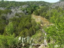 View of stream down below from Spicewood Canyon Trail.