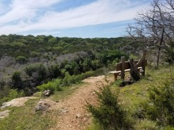 Bench at an overlook on the Spicewood Canyon Trail.