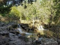 2017 Colorado Bend Day 3 64