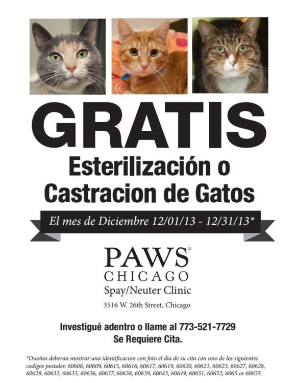 paws-free-day-02