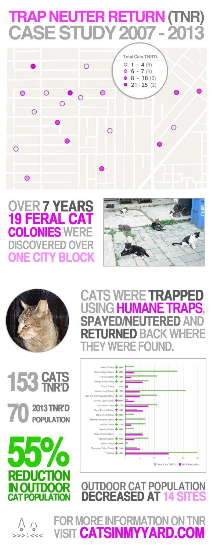 Feral-Cat-Map-2013-Final