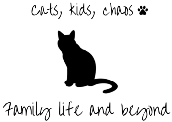 Cats Kids Chaos logo