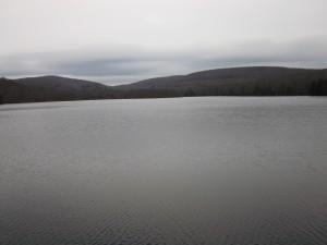 Mongaup Pond
