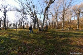 Camping/ Picnic Area