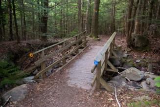 Hotel Kaaterskill Trail
