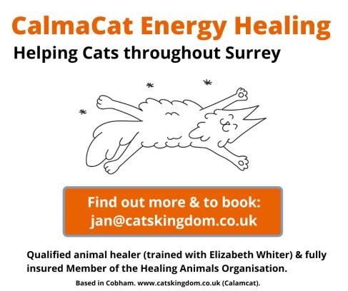 CalmaCat Energy Healing