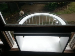 catwindowpatio16