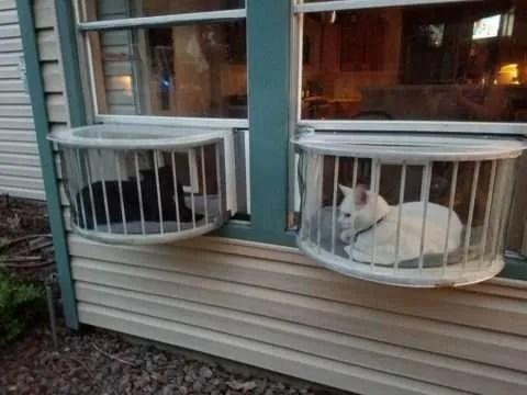 Window Mounted Cat Litter Box