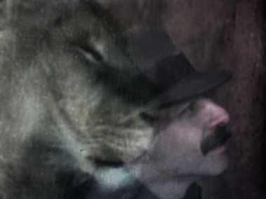 jim the lion