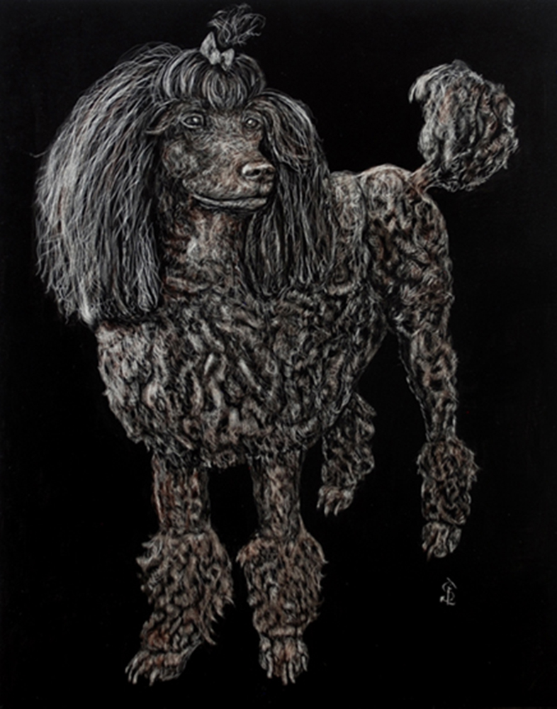 Licky Scratchboard Pet Portrait © Sherry Loveless, 2020