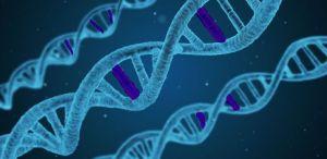 DNA random mutation genetic code