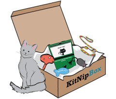 KitNip Monthly subscription box for one cat
