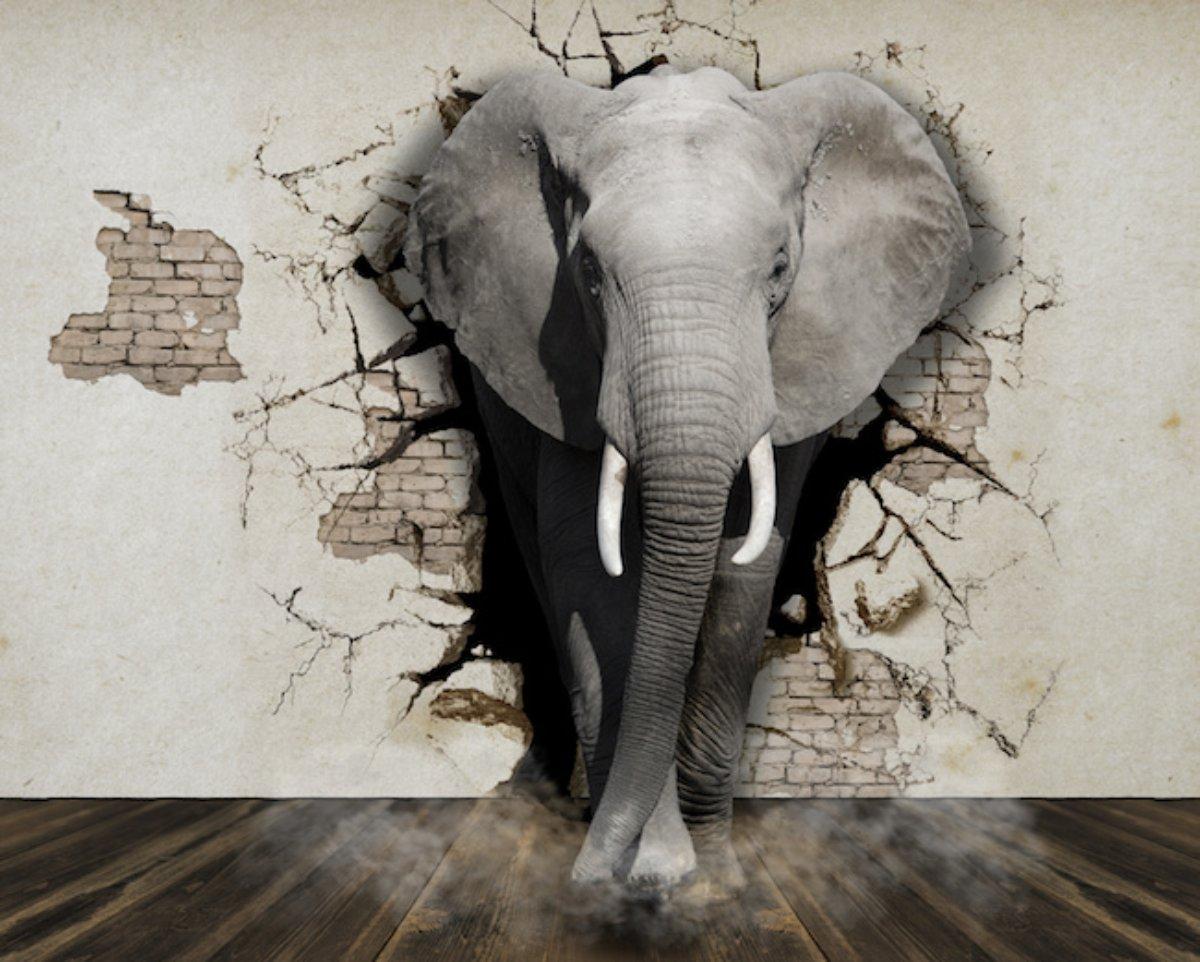 L'elefante nella stanza di un onesto osteopata