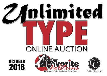 Unlimited Type Sale