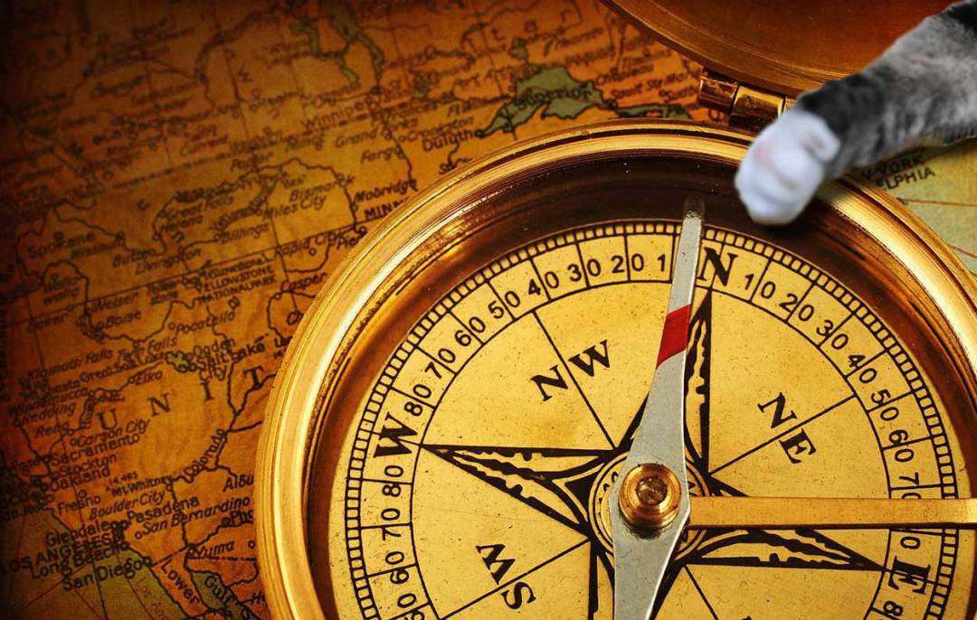 A cat's paw is reaching for a gold compass sitting an old map